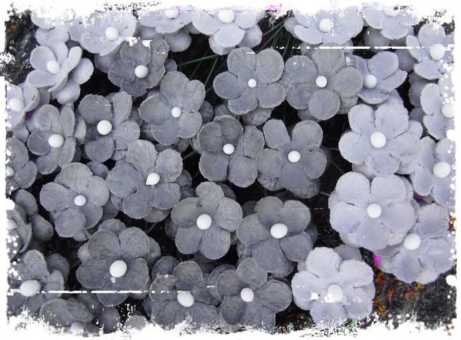 Bilde av Søte blomster